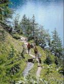 swiss-hiking.jpg