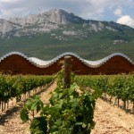 Modern Vineyard in Rioja Region, Spain