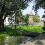 -Maastricht_City_Park_