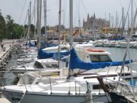 palma-harbour