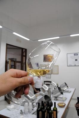 Glass of Leone de Castris new 100-malvasia bianca