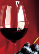 wine-tasting-montachino