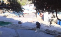 fisherman-repairing-net-in-cala-figuera
