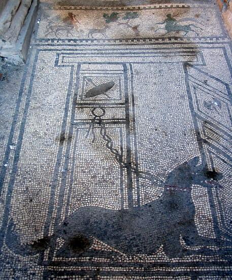 A mosaic inside a Pompeii house