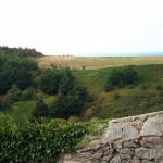 The fields of Herm Island