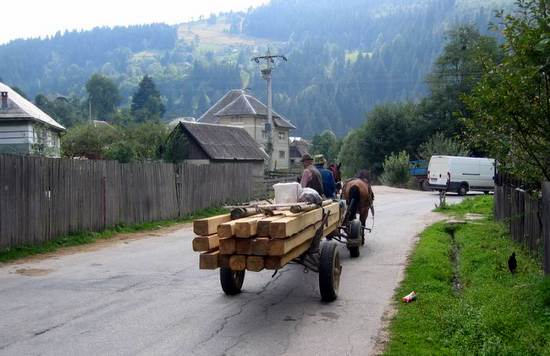 Horse_carriage _for _lumber