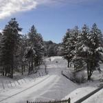La Sila National Park Italy