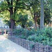 jardin_cluny