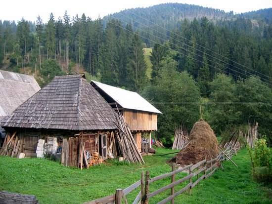 straw_roofed_home