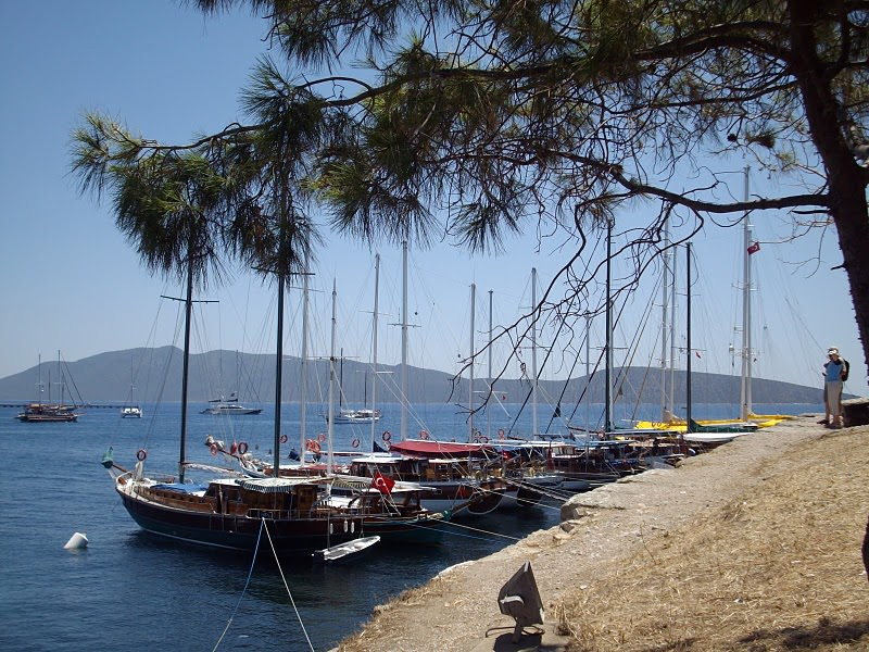 the sea at bodrum
