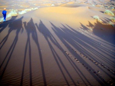 the shifting sand