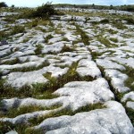 On the Burren -eschu