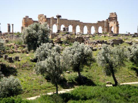 Basilica ruins, Volubilis