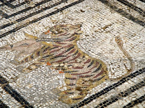 Mosaic tile floor--tiger with pheasant