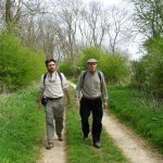 Lincolnshire_walk_Northam
