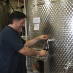 Winemaker- Giusti-wineries-Le-Marche
