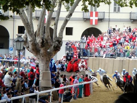 Horses racing in one of three heats before the final asti Palio race