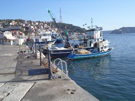 boats along the bosphorus headed to Sariyer
