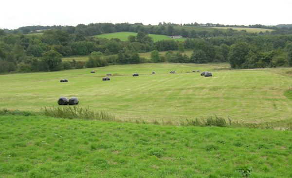 Hastings Battlefield