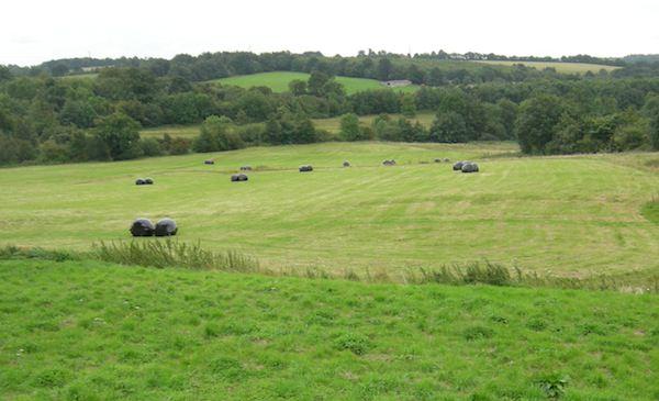 Hastings Battlefield