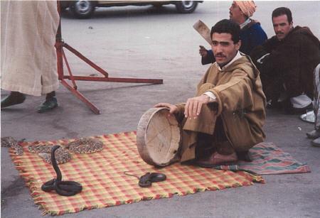 Snakecharmer Djamaa el Fna