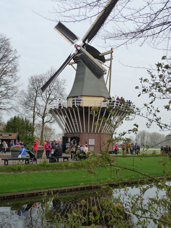 Great View from the Keukenhof Windmill
