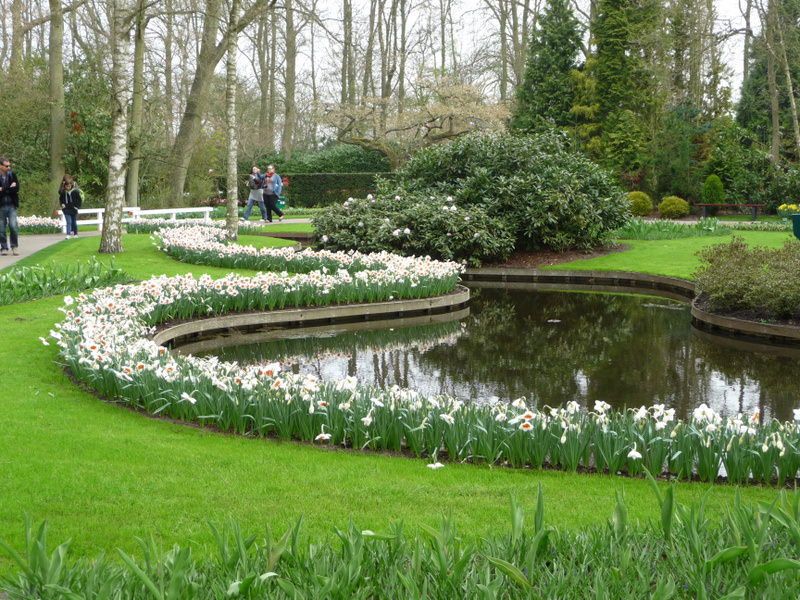 A Narcissus Path