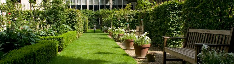 salters-garden
