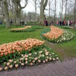Kukenhof Gardens