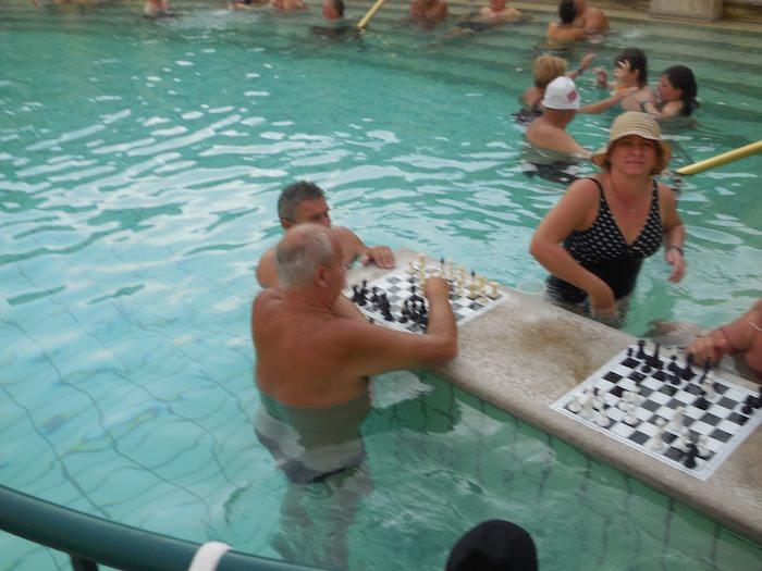 Szecheyni chess players