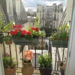 Small balcony off Paris apartment kitchen