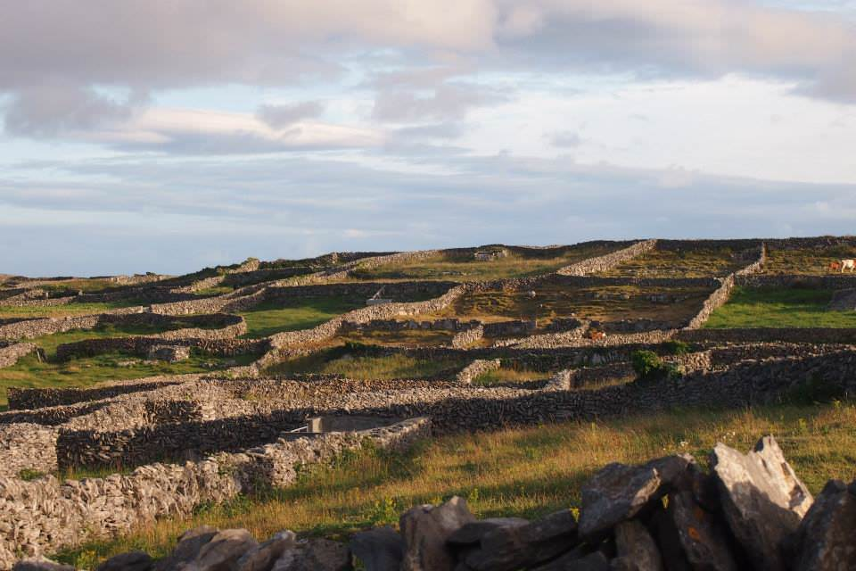 The patchwork limestone walls of Inis Meain