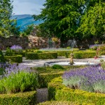 White gravel pathways meander through the castle grounds, separating circular arrangements of brightly colored flowers and purple lavender blooms