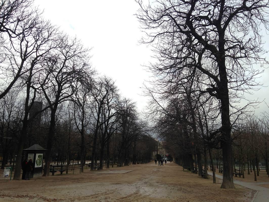 Wintery day at Jardin du Luxemberg