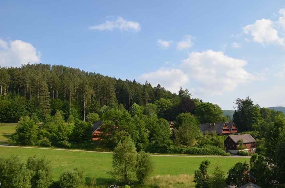 Another view of theBlack Forest with farm houses, forest, and fields
