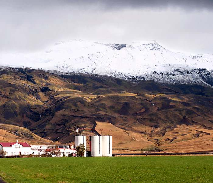 The restless volcano, Eyjafjallajökull, on Iceland's south shore deposited six inches (15cms) of ash on the farm and the sheep in the fields.