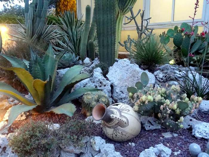 La Cutura cactus garden