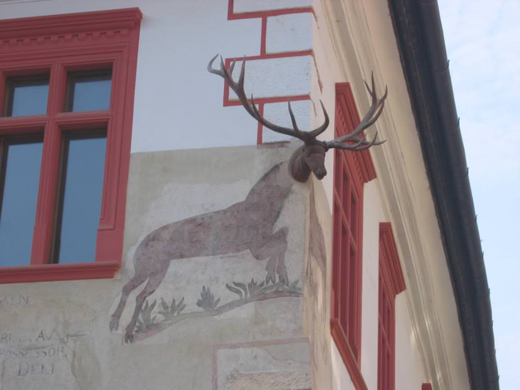 Sighisoara's Stag house