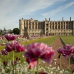 The Castle of Saint Germain en Laye