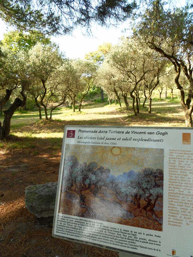 Reproduction of Olive Trees with Yellow Sky and Sun