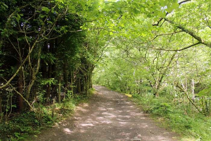 On the Elidir Trail