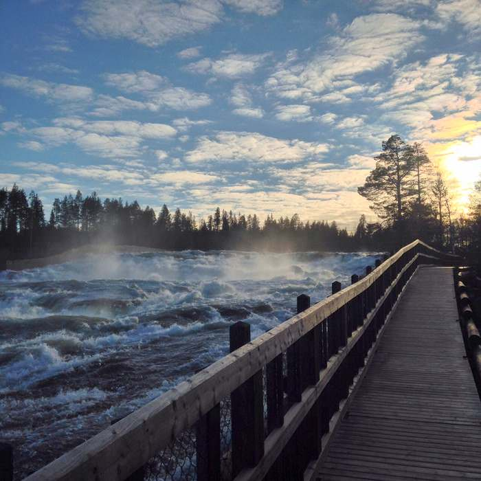 The raging waters of Storforsen Falls in Northern Sweden