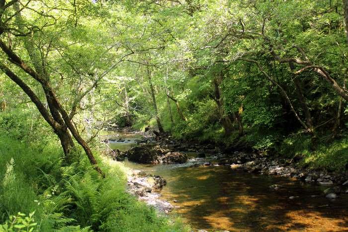The River Nedd Fechan,