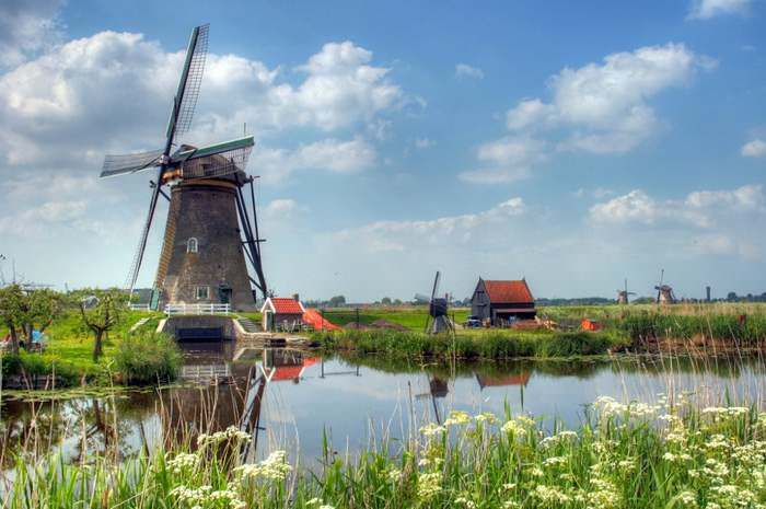 Kinderdijk Windmills in spring