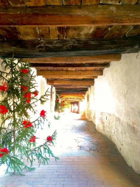 Donkey's Alley- Via degli Asini in Brisighella, Italy