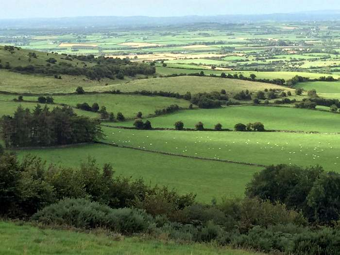 The green fields of Ireland