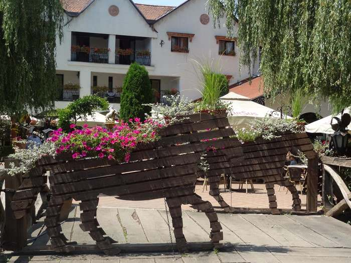 Playful suggestion of the underlying themes of Maramureș County