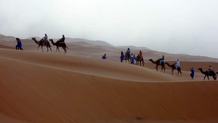 Camel train into the Sahara dunes