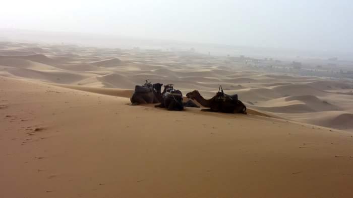The Moroccan dreamscape of the Sahara