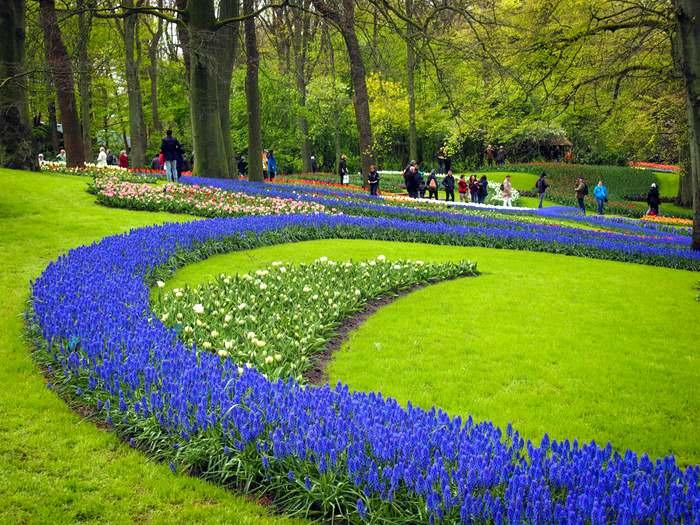 Bright spring flowers in the Keukenhof Gardens